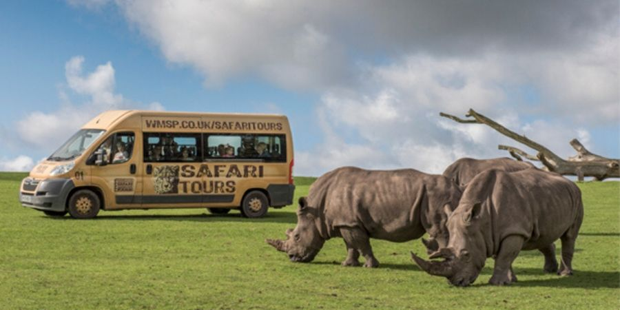 west midland safari park van with rhinos in field