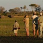 The Best Safaris In The World! 6