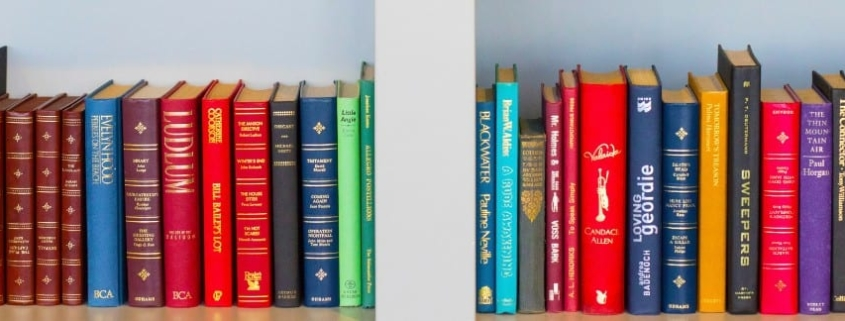 Close up of white, modern bookshelf filled with colorful safari books