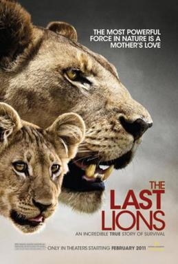 last of the lions, safari movie