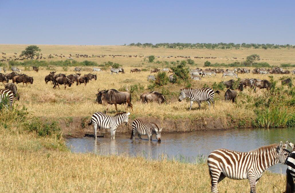 masai-mara-national-park