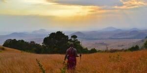 Tanzania Safaris 4