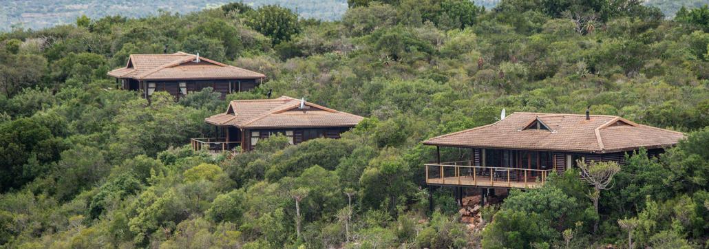 Three safari lodges at Kariega semi-hidden in the bushveld