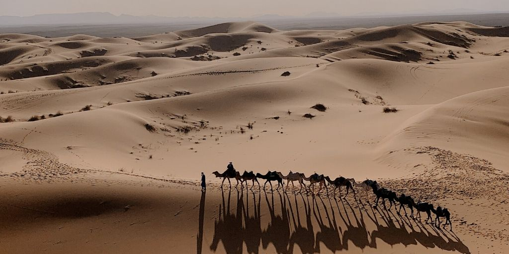 A camel caravan trudges over dunes in the Sahara Desert - one of the seven african natural wonders