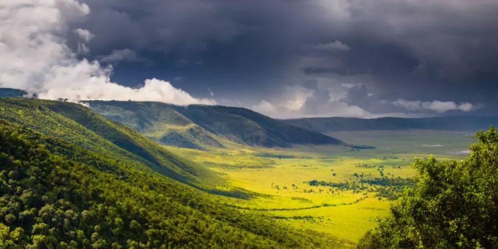 Ngorongoro crater rim and floor - one of the seven african natural wonders