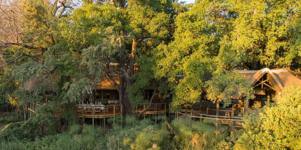 Camp Moremi, lost in the vegetation