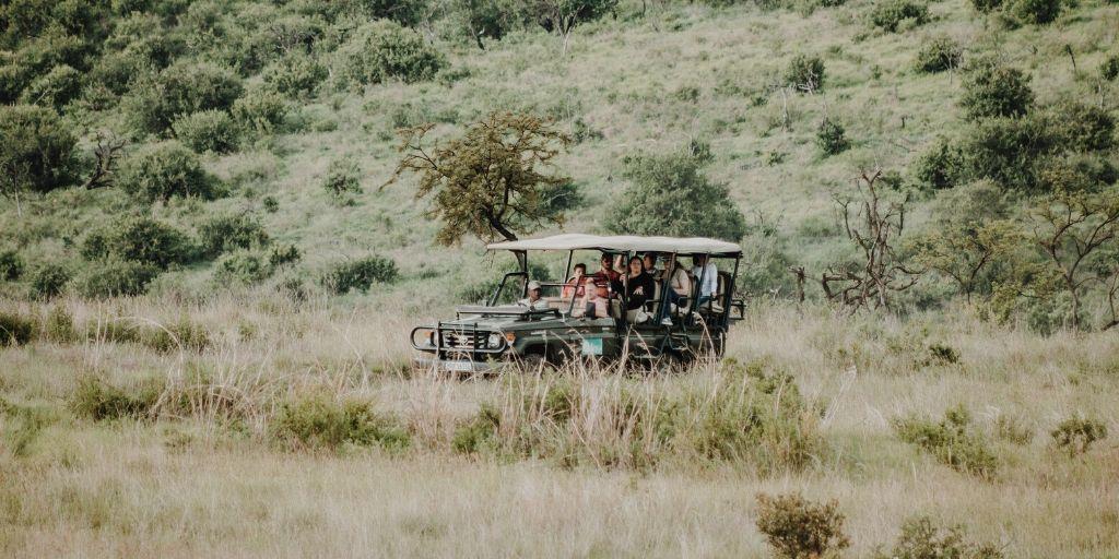 game drive through green bushland